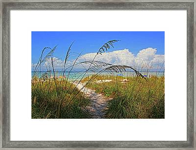A Day At The Beach Framed Print by HH Photography of Florida