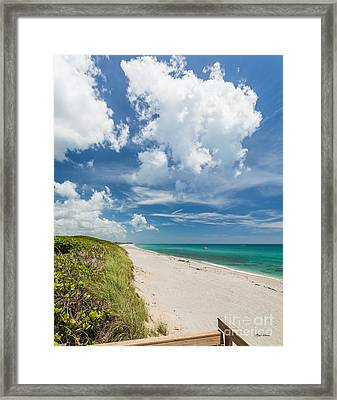 A Day At The Beach Framed Print by Michelle Wiarda