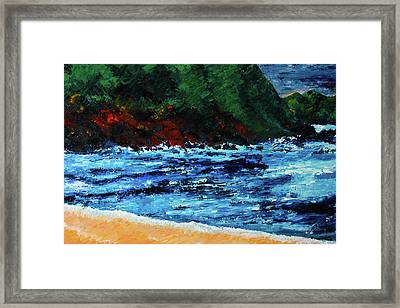 A Day In Costa Rica Framed Print