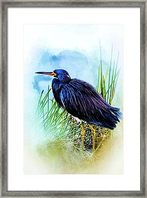 A Day In The Marsh Framed Print
