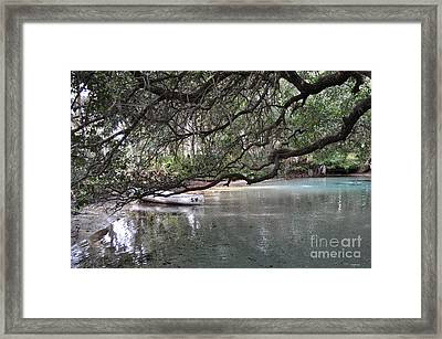 A Day Of Snorkeling Framed Print