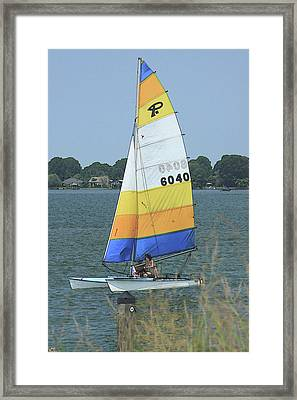 A Day To Sail Framed Print by Karol Livote