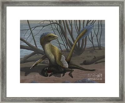 A Deinonychus Protects Its Kill Framed Print by Emily Willoughby