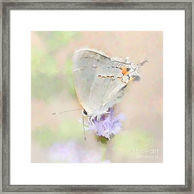 A Delicate Situation Framed Print