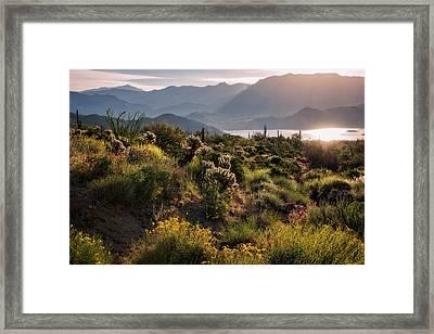Framed Print featuring the photograph A Desert Spring Morning  by Saija Lehtonen
