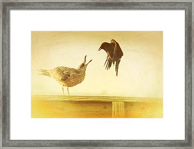 A Disagreement Framed Print
