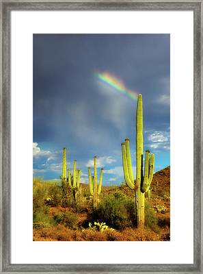 Framed Print featuring the photograph A Divine Touch by Rick Furmanek