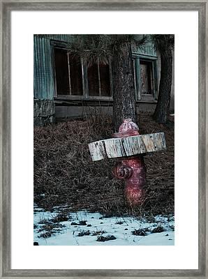 A Dog's Dream Framed Print