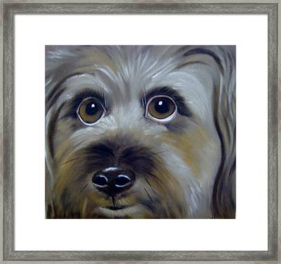 A Dog's Love Framed Print