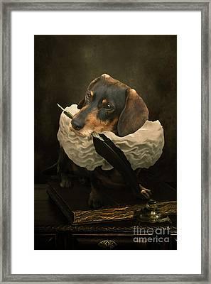 A Dogs Tale Framed Print by Babette Van den Berg