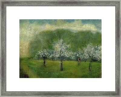 A Dream Of Apple Blossom Time Framed Print