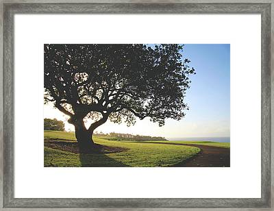 Framed Print featuring the photograph A Dreamy Dream by Laurie Search
