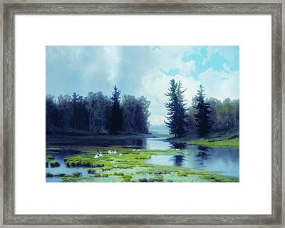 A Dreary Day At The Pond Framed Print