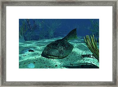 A Drepanaspis On The Bottom Framed Print by Walter Myers