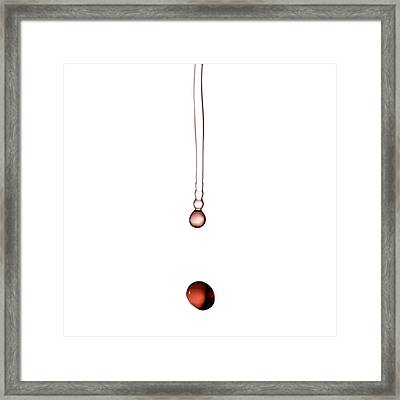 A Drop Of Wine Framed Print