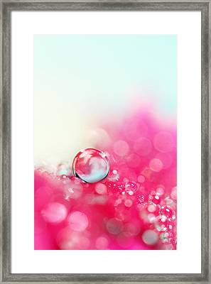 A Drop With Raspberrys And Cream Framed Print by Sharon Johnstone