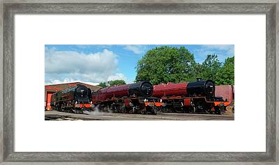A Duchess And Two Princesses Framed Print by David Birchall