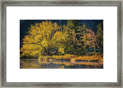 A Fall Day  Framed Print