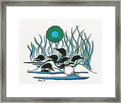 A Family Of Loons Framed Print