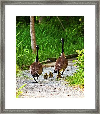 A Family Stroll Framed Print by Edward Peterson