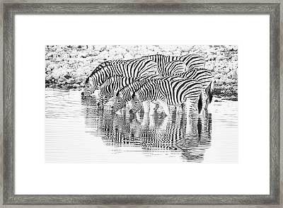 A Family That Drinks Together. Framed Print