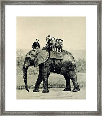 A Farewell Ride On Jumbo From The Illustrated London News Framed Print by English School