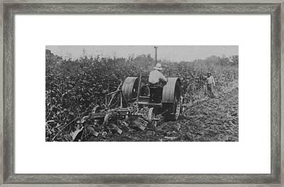 A Farmer Driving A Tractor Framed Print by American School