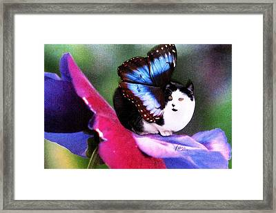 A Feline Fairy In My Garden Framed Print