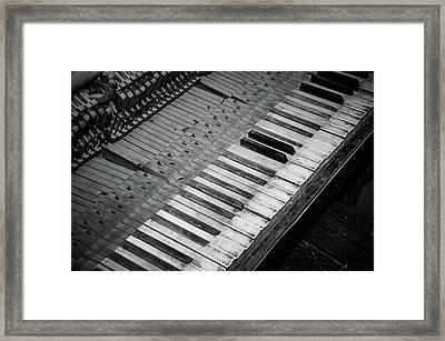 A Few Remain Framed Print