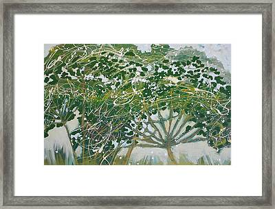 A Field Of Valerian Framed Print