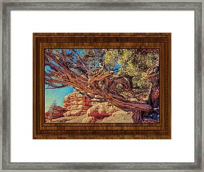 A Fighter Tree Framed Print