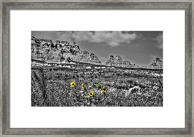 A Figment Of Your Imagination Framed Print
