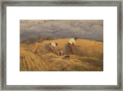 A Finished Study For Reaping Framed Print by John Linnell