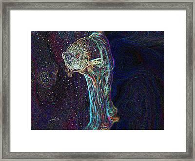 A Fish Called Poe Framed Print by Julie Niemela