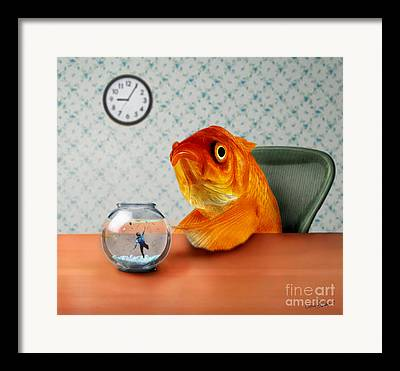 Fish Artwork Framed Prints