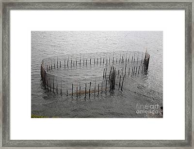 A Fish Weir Framed Print