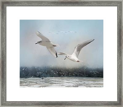 A Fishin' On The River Framed Print