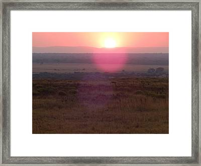 A Flare From South Africa Framed Print by Patrick Murphy
