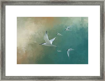 A Flight Of Terns Framed Print by Marvin Spates