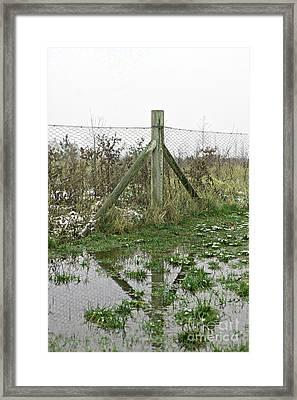 A Flooded Field Framed Print
