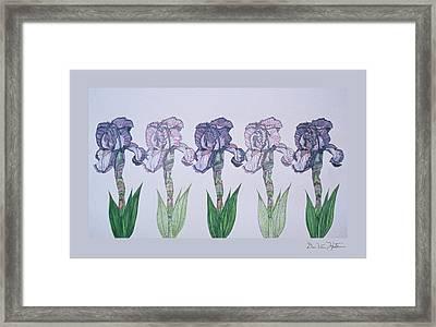 A Floral Line Framed Print