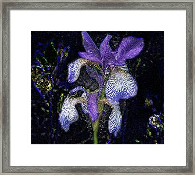 Framed Print featuring the photograph A Flower by Vladimir Kholostykh