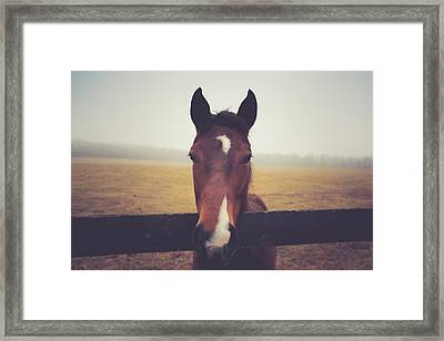 Framed Print featuring the photograph A Foggy Christmas Day by Shane Holsclaw