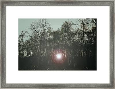 A Foggy Morning  Framed Print by Martin Newman