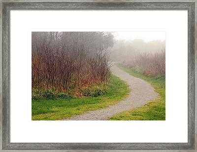 A Foggy Path Framed Print