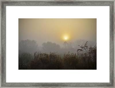 A Foggy Sunrise Framed Print