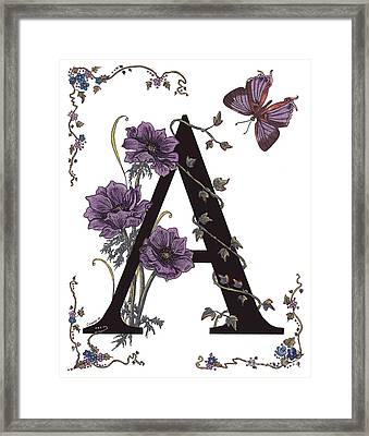 A For Anemone And Azure Streak Butterfly Framed Print by Stanza Widen
