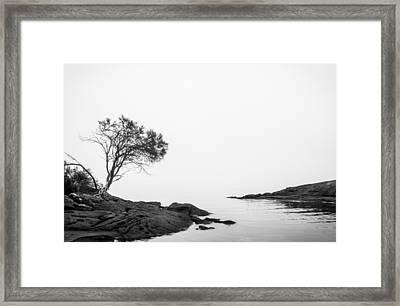A Foreboding Tasman Inlet Framed Print