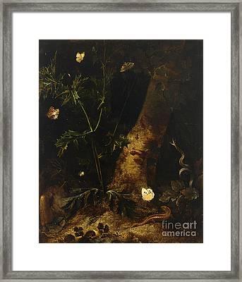 A Forest Floor  Still Life With A Salamander Framed Print by Celestial Images