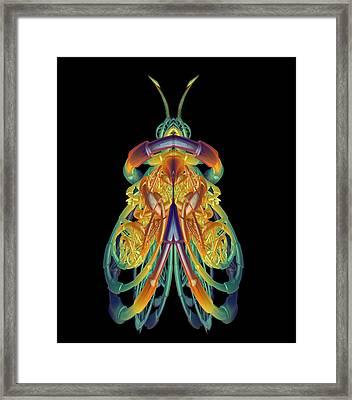 A Fractal Bug Framed Print